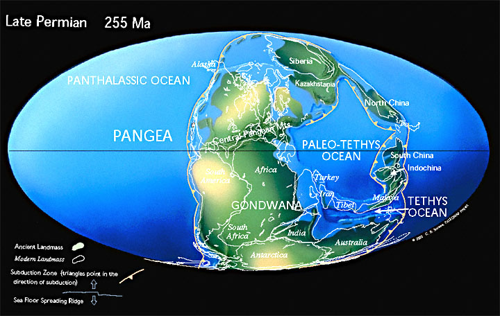 Paleogeographic reconstruction for the Permian